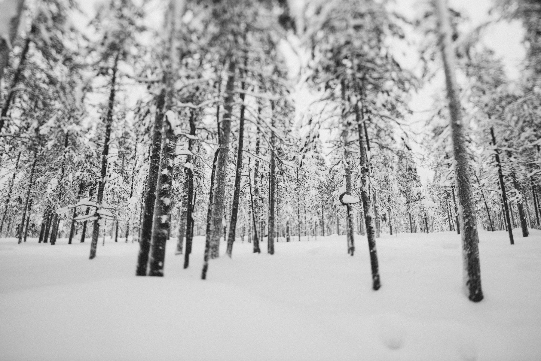 reisefotografie-lappland-finnland-125