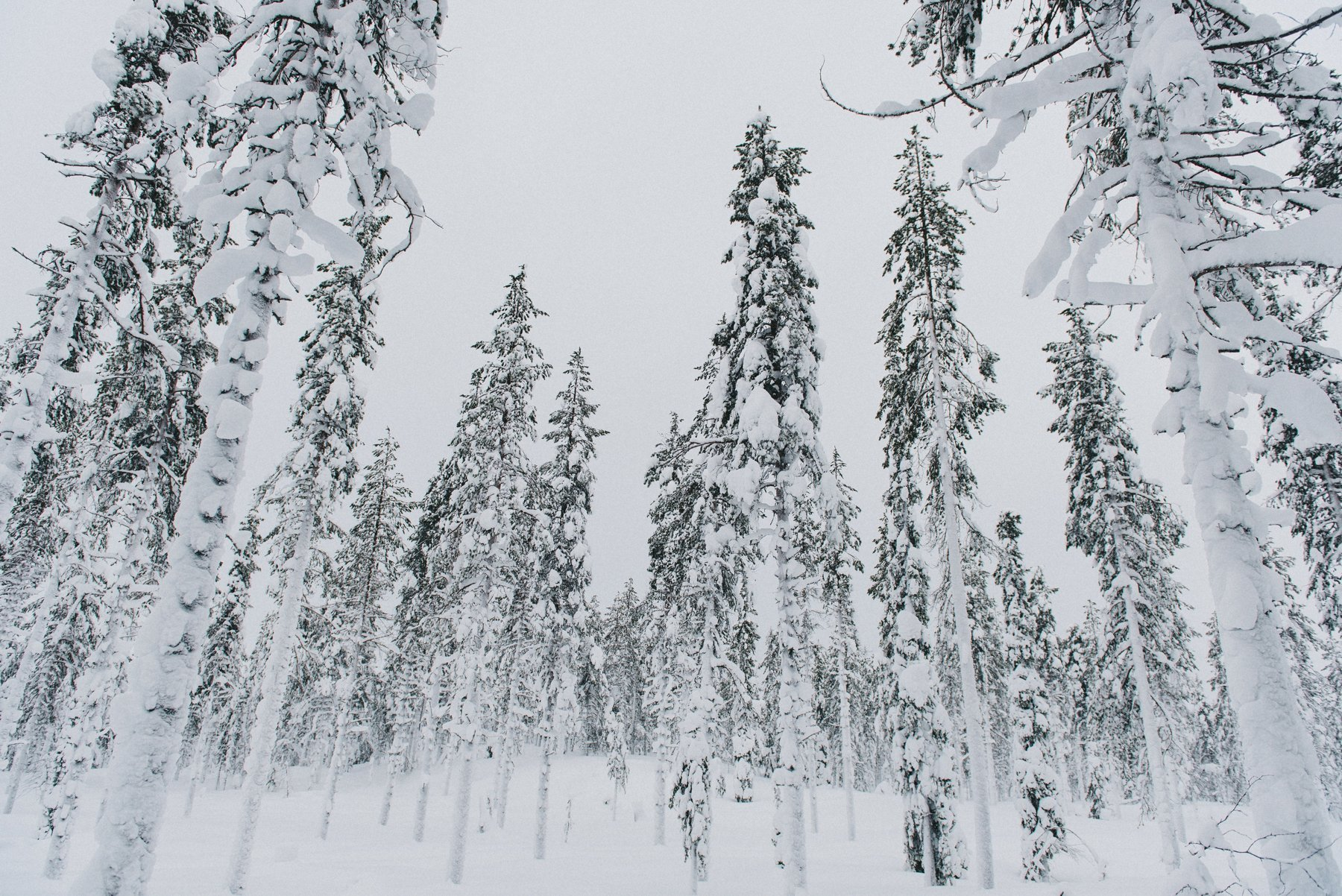 reisefotografie-lappland-finnland-172
